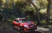 2019 Toyota Rav4 Xle Vs Limited